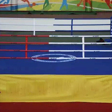 International Competition Boxing Ring For Sale With Reasonable Price