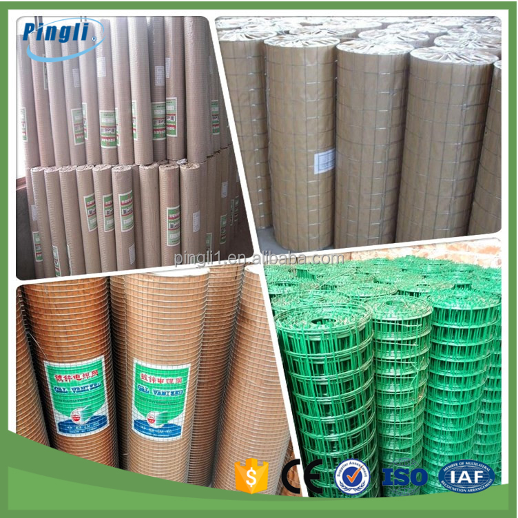 Hot selling in 2016 square hole galvanized welded wire mesh rolls