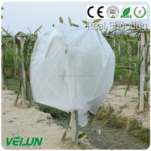 fancy plastic bags 20kg used for plants protection anti-UV