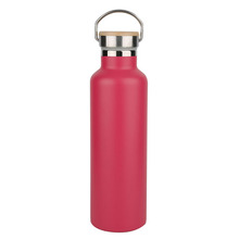EverJoy BPA Free Double Wall Vacuum Insulated Stainless Steel Water Bottle for Sports