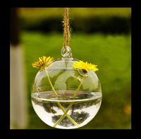 Hanging ball with two small hole shape water glass vase