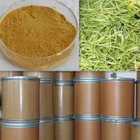 Factory supply natural pure Honeysuchle Flowers Extract stock
