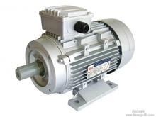 Asynchronous motors 15kw H160 3 phase light weight ac induction electrical motor