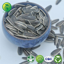 Sunflower Seeds wholesale for export