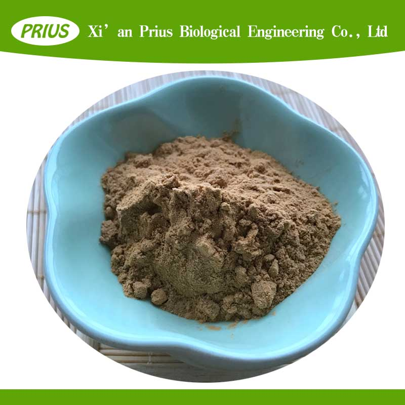 anti-caner herb extract Convolvulus Arvensis Extract field bindweed extract