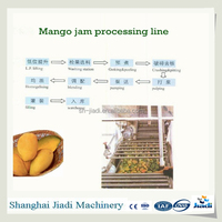 Stainless steel mango processing machine