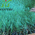 China Factory Made 35mm Hot-Selling Artificial Field Grass Turf
