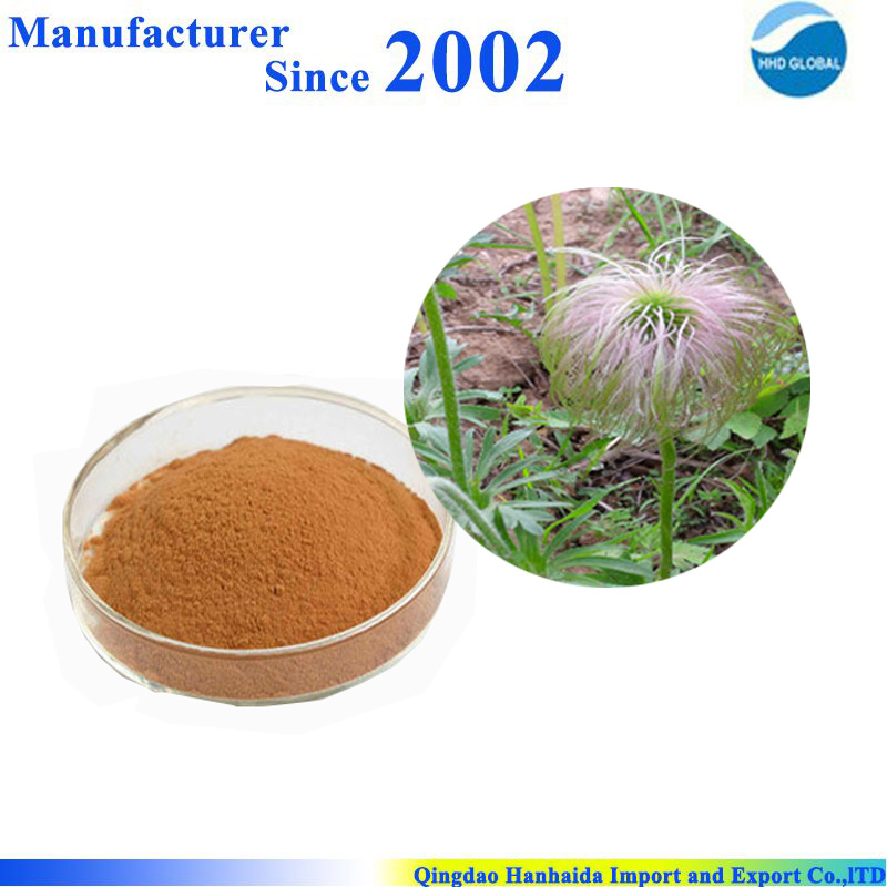 Hot selling high quality pure nature Anemone Root Extract , Anemone chinensis extract
