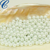 Hot New Products 2016 AAA Grade Fake Pearl Beads Wholesale