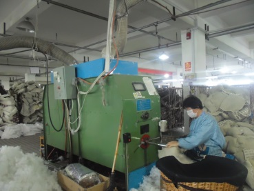 Cotton Filling