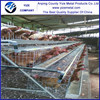 layer poultry cages/agricultural equipment/modern house design