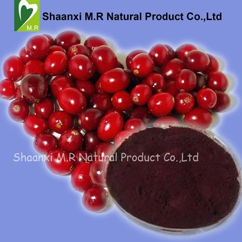 100% Natural Cranberry Extract Proanthocyanidins 25%-50%