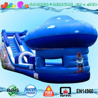 giant inflatable water slide with pool for sale,giant inflatable water park for kids