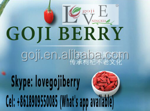 2016 new GOJI BERRIES----GOJI SCM offer