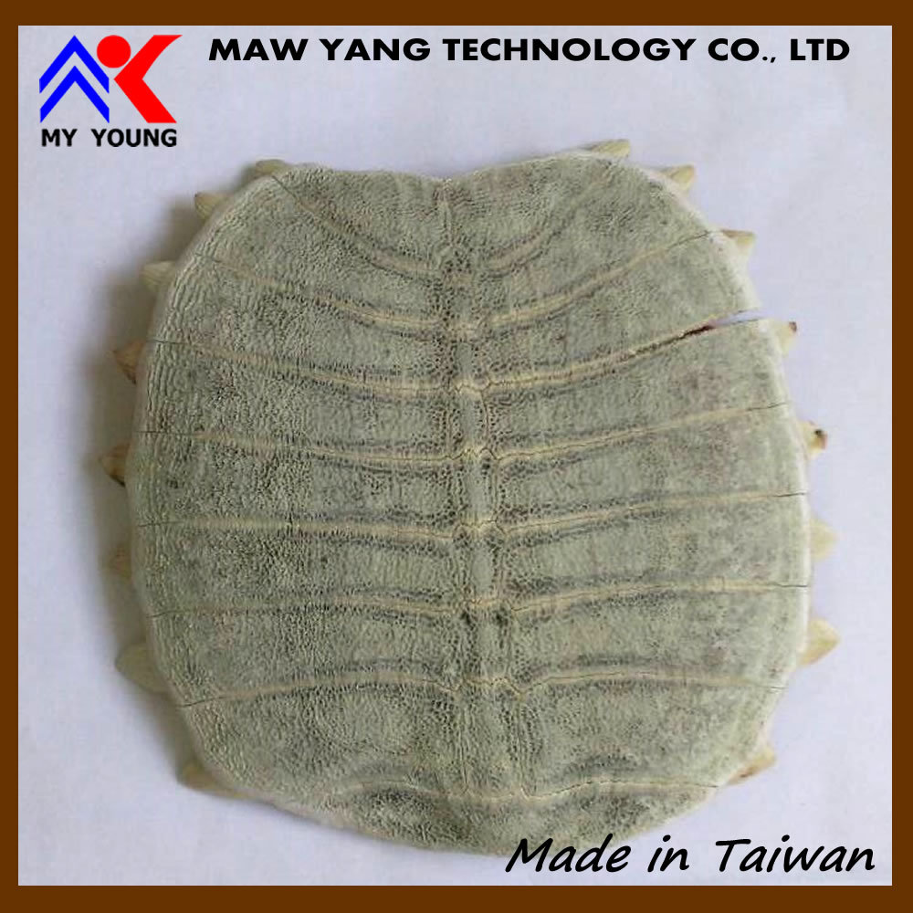 Premium Quality Trionyx shell powder supplements manufacturer