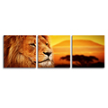 Lion Photography Canvas Painting Stretched Canvas Printing Art Decoration for Sitting Room 3-Panel Animal Giclee Prints