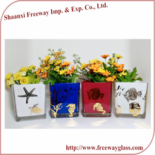 Wholesale clear decoration cheap Square Plante flower pots