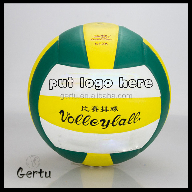professional volleyball for training