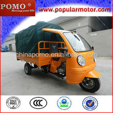 Hot Selling Popular Petrol 2013 New Cargo Cheap Gas Powered Tricycle