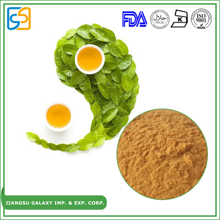 Factory direct sell 95% through 80 mesh green tea extract polyphenols 50% egcg instant tea powder
