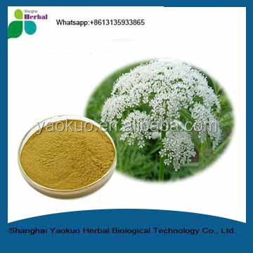 Fructus Cnidii Powder / Common Cnidium Fruit P.E./cnidium Monnier Extract 35% -90% Osthole