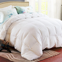 The Most Popular Best Price Comforter