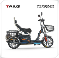 Offer factory price 500w 800w 1000w power strong loading ability electric tricycle