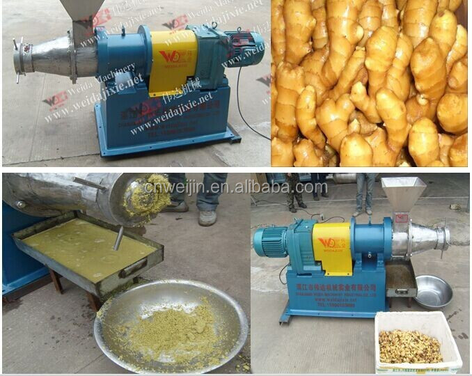 Ginger Juice Extraction Machine Ginger Juice Processing Machine