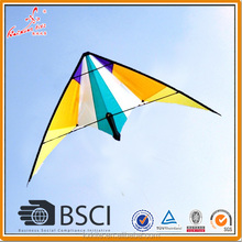 Professional dual line stunt kite for sale