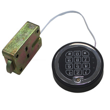 Swingbolt Time delay digital electronic lock