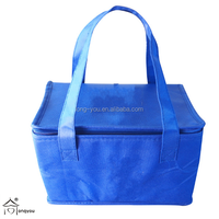 customized cute takeout non woven new style thermal cheap beer cooler lunch bag