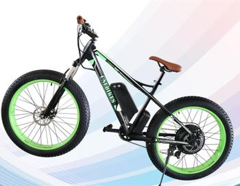 Lithium battery wholesale electric bike from China
