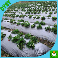 Agricultural Silver-black, Transparent, Double black Mulch film, Low Mulch Film Price