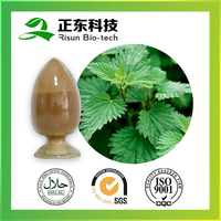 Free Samples Nettle Extract 10:1 Powder