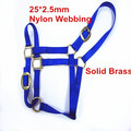 1 inch Nylon horse halter with brass fittings, western headstall