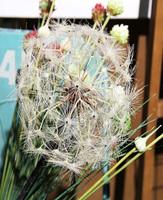 Colorful artificial flower artificial dandelion for home decoration