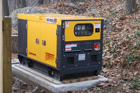 20kva China Hot Sale Diesel Generator To Lebanon Beirut