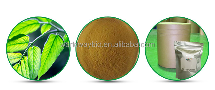 Mulberry extract powder 4% Mulberroside A 20% Flavonoids 10% polysaccharides,FDA HACCP 5% DNJ 10% polysaccharides supply