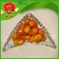 fruit vegetable yellow Fresh cherry tomatoes wholesale low price