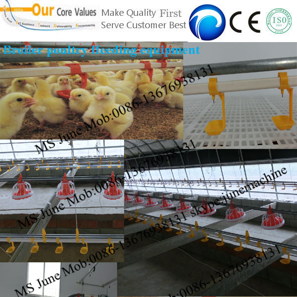Best broilers and breeders automatic poultry feeding equipment from China 008613676938131