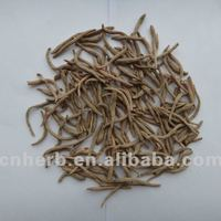 Dried Crown Prince Ginseng