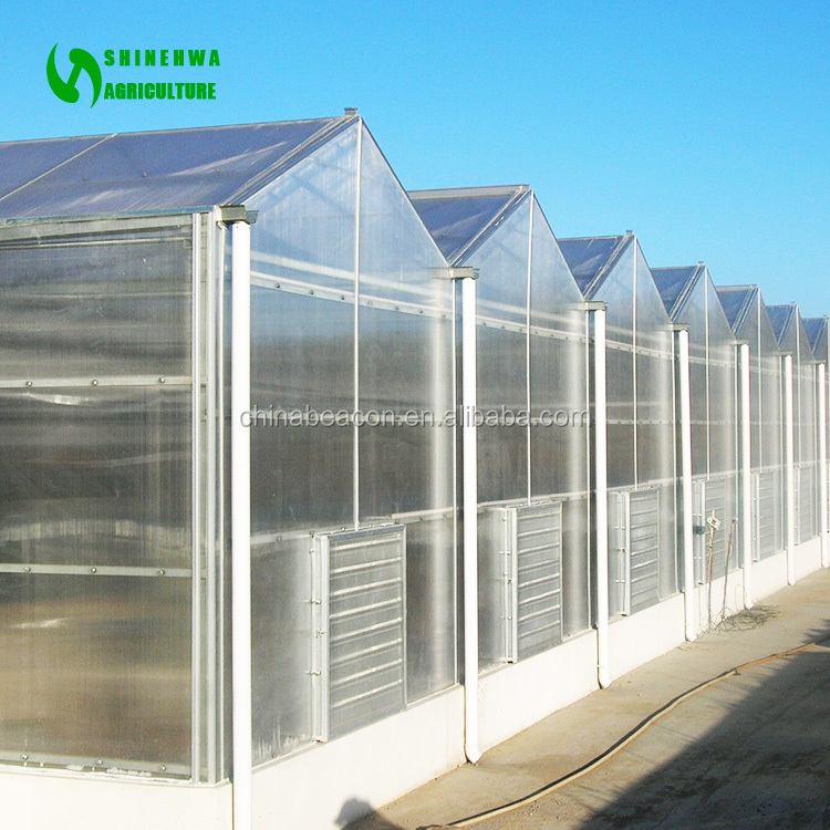 Hot Sale Top Quality Polycarbonate PC Garden Greenhouse/ Grow House