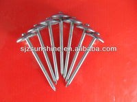 "bwg9x2.5"" umbrella head roofing nail factory"