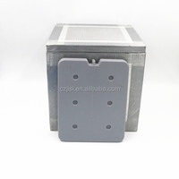 Environment Friendly Insulated Thermal Cooler Ice