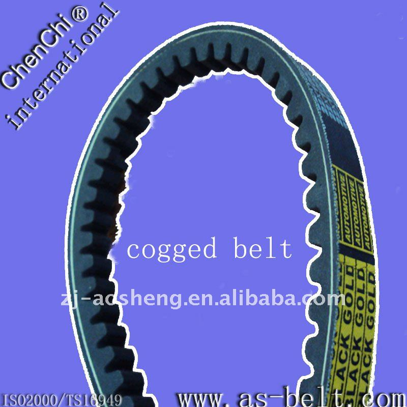 export cogged belt in quantity,low price,for MOTOCYCLE