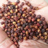 Bai hua suan teng guo factory supply emblica ribes for whole and dry fruit herbs