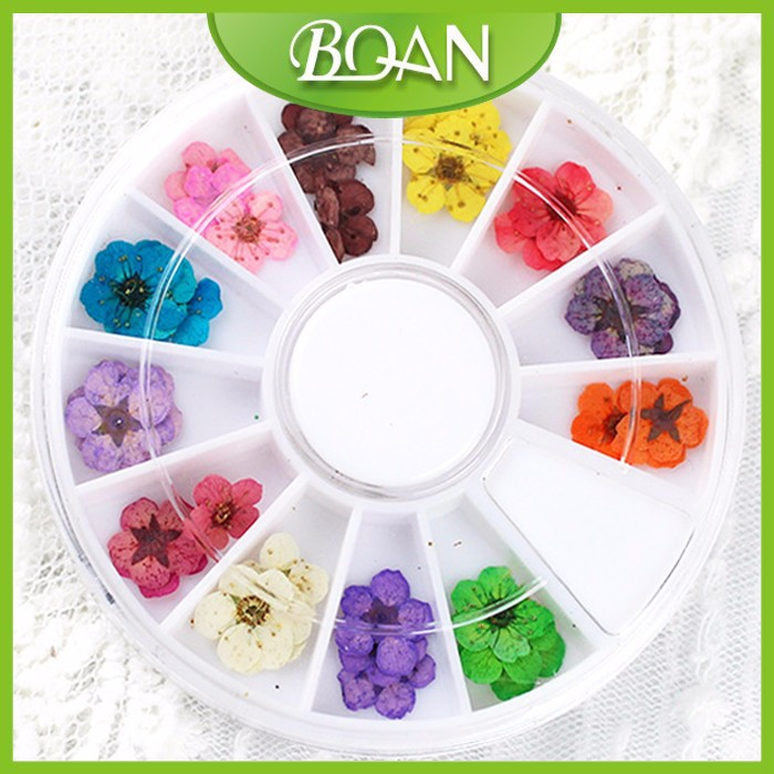 BQAN 12 Colors Beautiful Tiny Slice Flower Nail Art Decoration Fashional Decorated Nail Tips