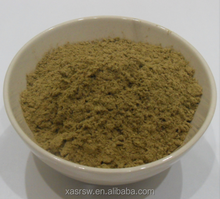 Capillary / Virgate Wormwood Herb Extract Powder /water moisture penetration