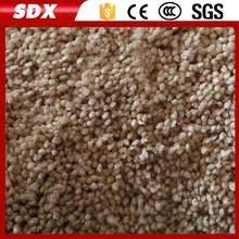 Fashion Polyester Commercial Carpet Floor Outdoor Rubber Backed