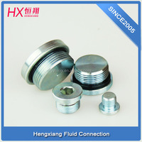 hydraulic pipe metric tube fittings with mild steel carbon steel plug 4HN-48 for pipe connectors